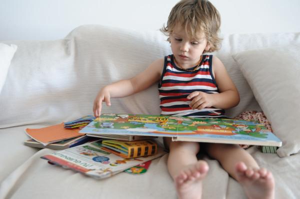 Biblioteca familiar: la biblioteca de casa
