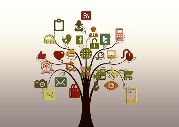 Cómo verificar perfiles en redes sociales (I)