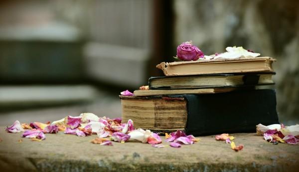 Las bibliotecas también son víctimas en las guerras