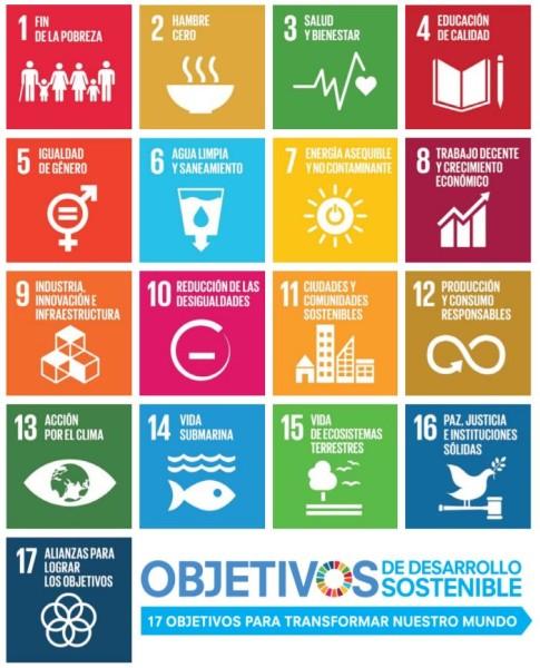Be water my friend: los 17 pasos de Naciones Unidas para salvar el mundo y como las bibliotecas lo hacen posible
