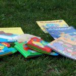 Las bibliopiscinas: una manera de refrescarse