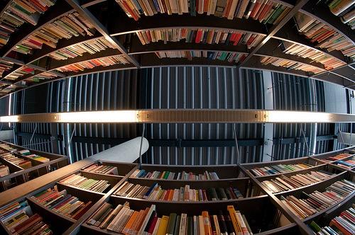 Biblioteca Híbrida
