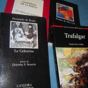 Muestra de los libros que entraron en mi estantería como 'lecturas obligatorias'