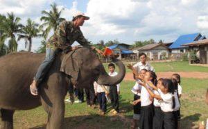 Reparto de libros desde el elefante