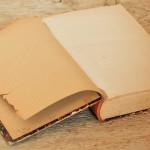 Libro ficticio