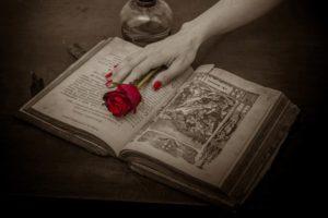 Libro y rosa roja